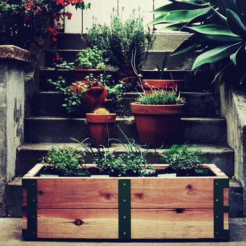 Gardenkit.jpg