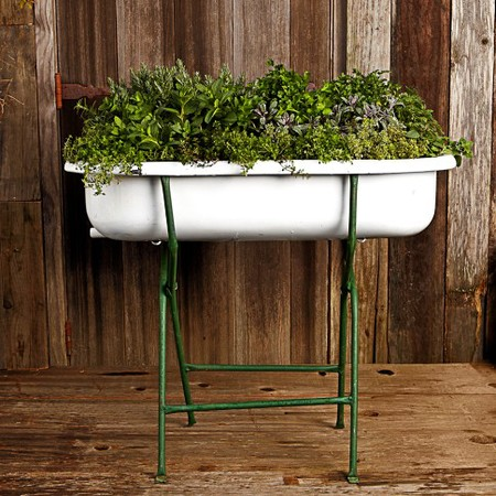 vintage-bathtub-for-herbs-and-gardening.jpg