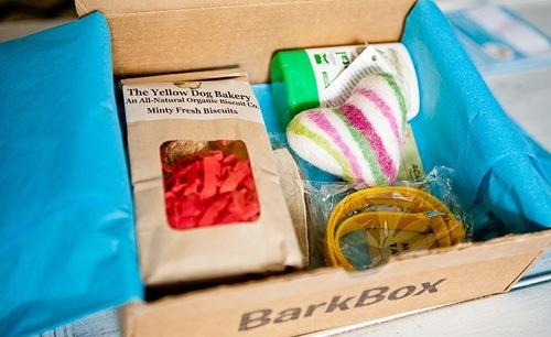 bark-box-1.jpg