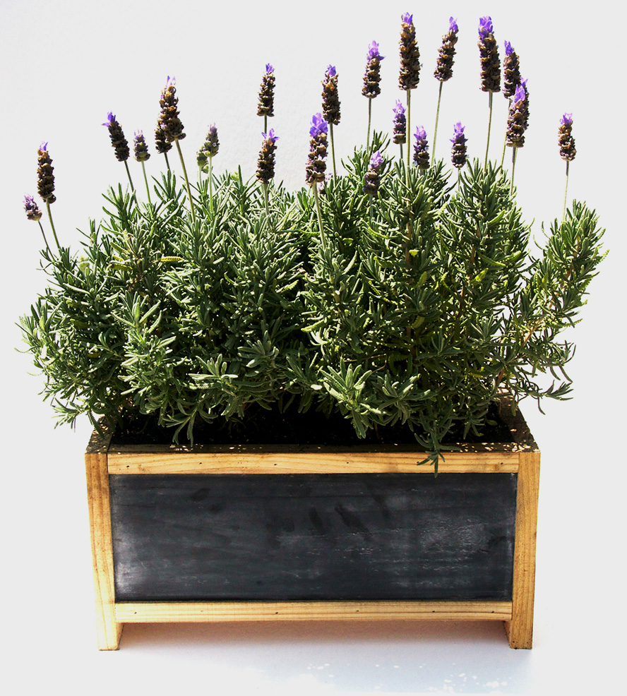 5 Great Wedding Gifts For The Home Garden And Patio